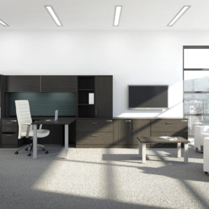 Private Office with Open and Closed Storage